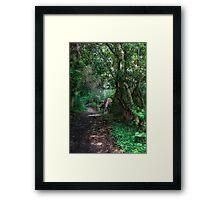 Forest Ponies Framed Print