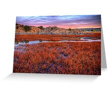 Sea of Red Greeting Card