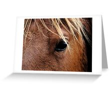 Eye of the Equine Greeting Card