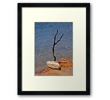 The Art of Survival Framed Print