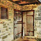 Barn doors..... by DaveHrusecky