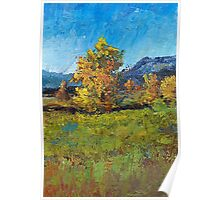 Cottonwoods-trees of New Mexico Poster