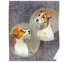 Puppy Love,Jack Russell Terrier Poster