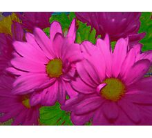 Hot Pink Duo Photographic Print