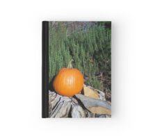 Pumpkin Time 5 Hardcover Journal