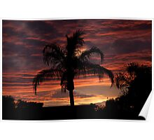 Sunset over St. Petersburg, Florida Poster