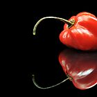 Red Habanero by carlosporto