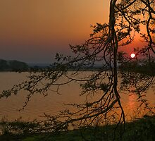 Sunset over Nsumo Pan by Vickie Burt