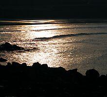 Golden Sunset by TREVOR34