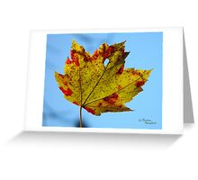 Painted Maple Leaf Greeting Card