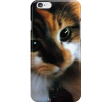 Calico Cat with Dilated Pupils iPhone Case/Skin