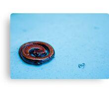 Salamander Games Canvas Print