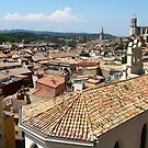 tiled roofs of the old town by mrivserg