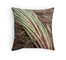 Pine Needles in a Corn Field - Central Minnesota Throw Pillow