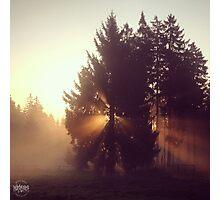 Herbstlicht Photographic Print