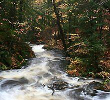 Hiawatha Highlands stream in the forest by Eros Fiacconi (Sooboy)