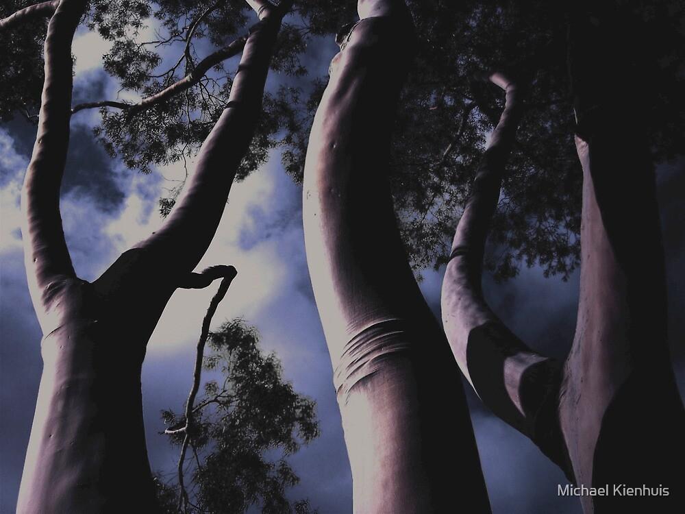 'Land Of The Giants' - Fitzroy - Melbourne Australia - 2007 by Michael Kienhuis
