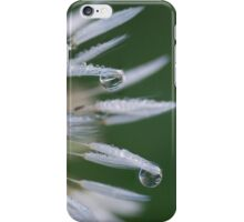 Dandi Drops iPhone Case/Skin