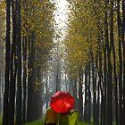 A LATE MORNING WALK by RakeshSyal