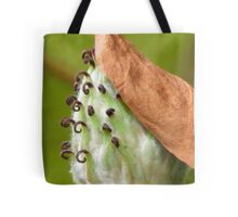 Curly Ferly  Tote Bag