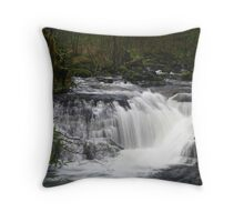 Sweet Creek 7 2010 Throw Pillow