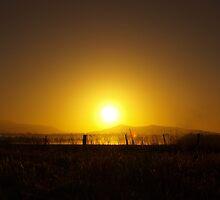 Misty Sunrise I by Sarah Howarth [ Photography ]