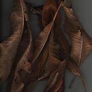 skins2 by strykermeyer
