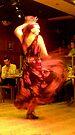 Flamenco II by elisabeth tainsh