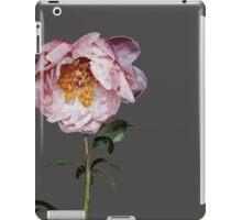 XX iPad Case/Skin