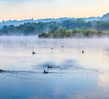 Misty Morning On The Lake 1 by colinstock