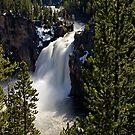 Upper Falls - Yellowstone River by Stephen Beattie