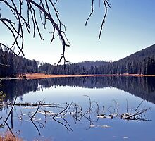 Twin Lakes Yellowstone by dgbimages