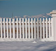 Rocky Mountain Fencing by phil decocco