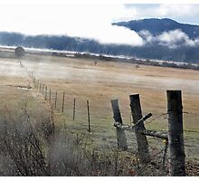 traveling the fence Photographic Print