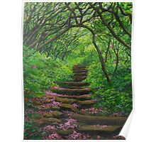 Forest Stairway Poster