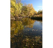 Michigan Pond Photographic Print