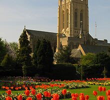 Bury St Edmunds Cathedral & Abbey Gardens by wiggyofipswich