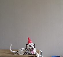 Party Animal by H Powell