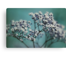 whispers of spring Canvas Print