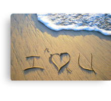 I 'heart' U! Canvas Print