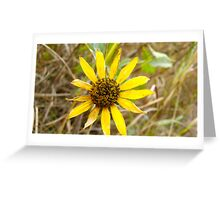 Perfect Imperfection Greeting Card