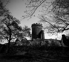 Bradgate Park - Old John II by Mike Topley