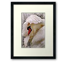 am i a swan yet? Framed Print