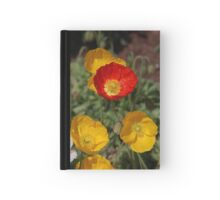Poppies Hardcover Journal