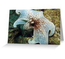 I'm Really HUGE, Too! Greeting Card