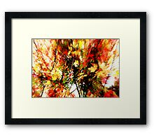 Two Second Fall Framed Print