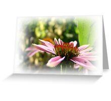 Sun Seeker Greeting Card
