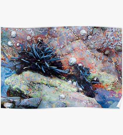 Gloaming Rockpool Poster