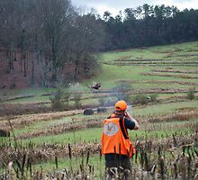 BIRD HUNTER BRINGS DOWN PHEASANT   by Wayne Hughes