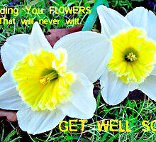Get Well Soon - Flowers by teresam